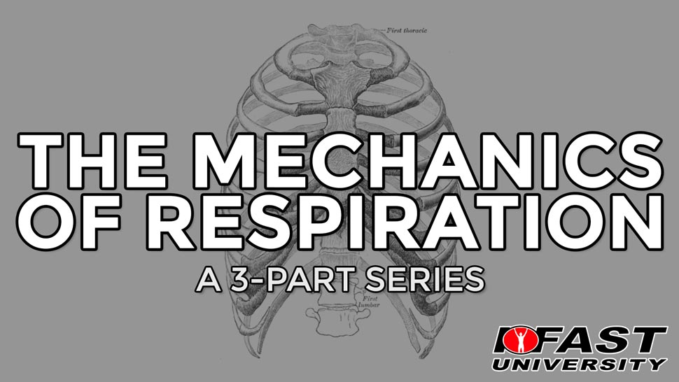 The Mechanics of Respiration: A 3-part series