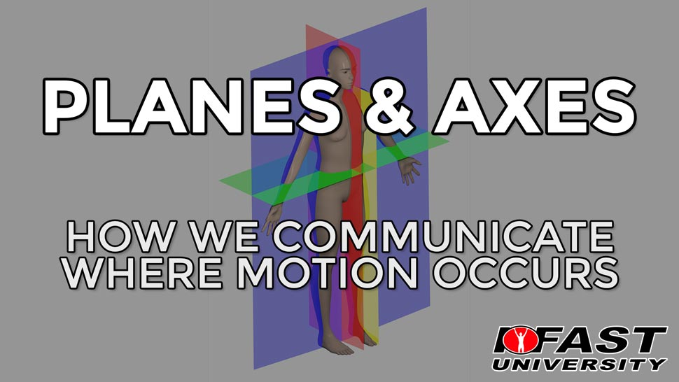Anatomical Planes and Axes: How we communicate where motion occurs