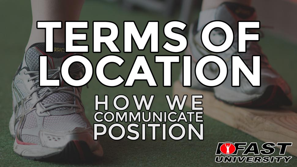Anatomical Terms of Location: How we communicate position
