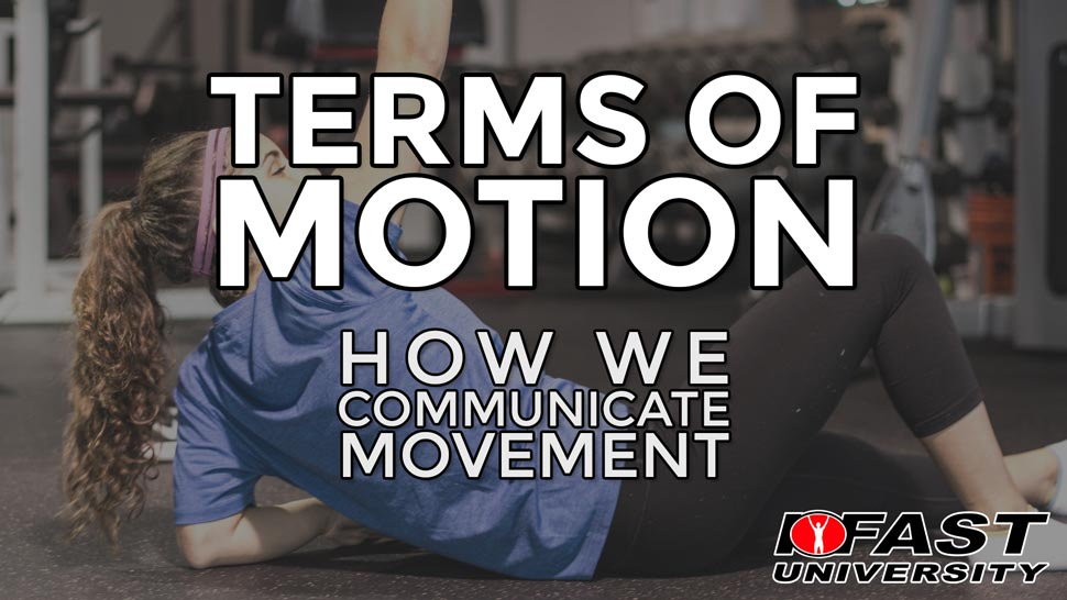Anatomical Terms of Motion: How we communicate movement