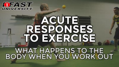 Acute Responses to Exercise: What happens to the body when you work out
