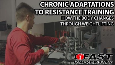 Chronic Adaptations to Resistance Training: How the body changes through weightlifting