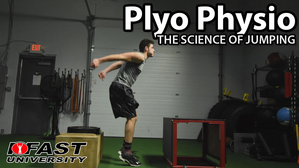 Plyo Physio: The science of jumping